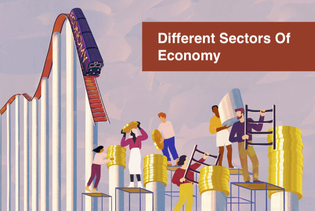 Different Sectors Of Economy